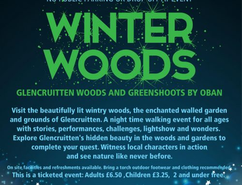 Winter Woods Friday 15th Sunday – 17th November