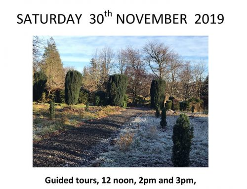 Cathedral Of Trees Open Day Saturday 30th November
